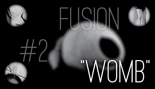 "Fusion #2 - ""Womb"""